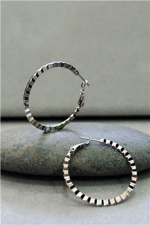 Harriet Silver Hoop Earrings