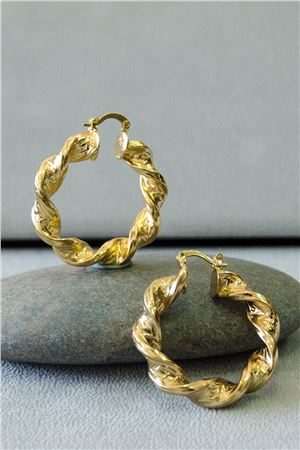 Chantelle Gold Hoop Twisted Chunky Earrings