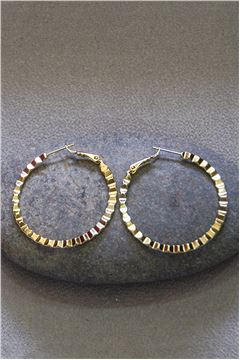 Rosaline Gold Hoop Earrings